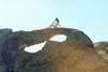 雪原鹰 的头像