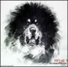西藏藏獒 的头像